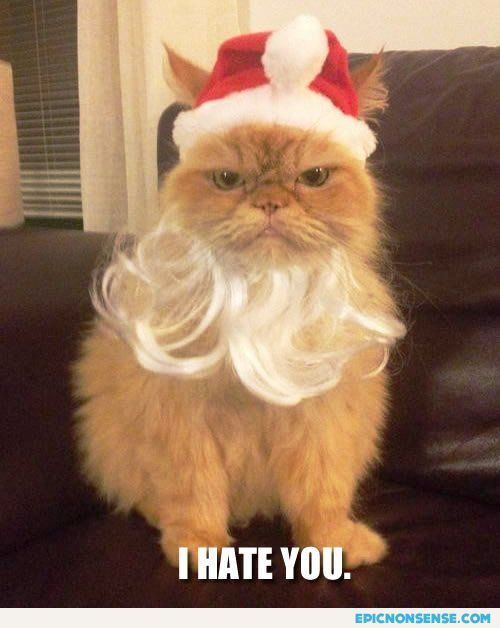 Grouch Santa Cat