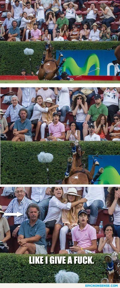 Horse Crash Meme