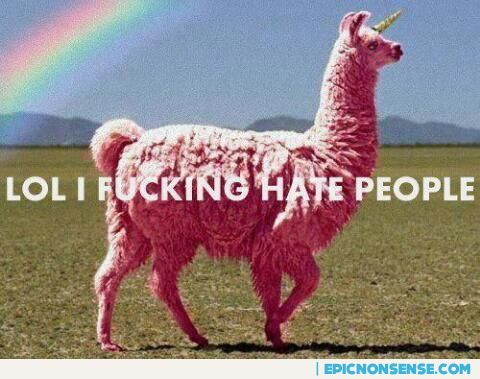 Go Home Llama You Are Drunk Not A Unicorn Epic Nonsense