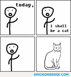 Becoming a cat