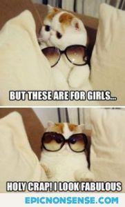 Girly Sunglasses