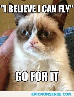 Grumpy Cat Wants R. Kelly To Fly