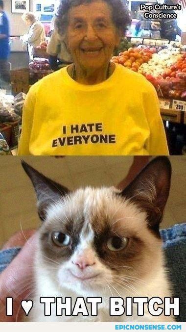 Grumpy Cat In Love
