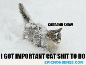 Goddamn Snow!