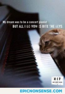 Becoming A Concert Pianist