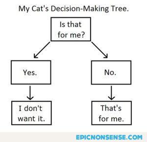 Cat's Decision-Making Tree