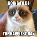 Grumpy Cat On Thursday
