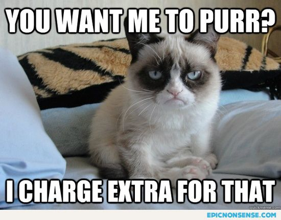 Funny Cat Quotes | Grumpy Cat Services Epic Nonsense