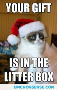 Grumpy Cat Gift