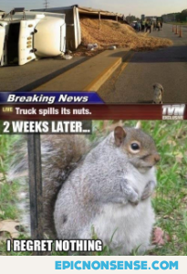 Nuts On The Road