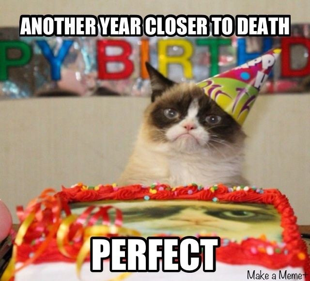 Grumpy Cat's Birthday!