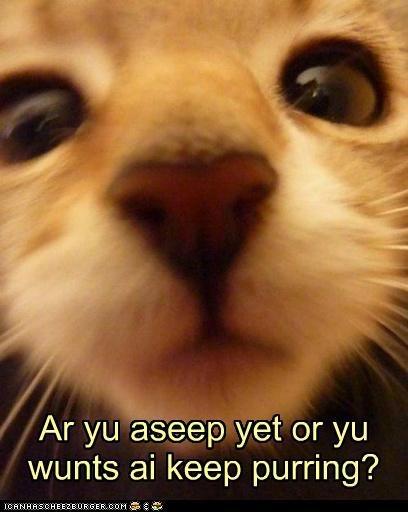 Aseep yet?