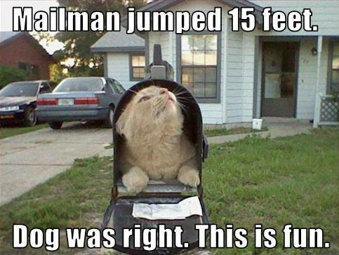 1604_mailman-jumped-fifteen-feet-dog-was-right-this-is-fun_483-363.jpg