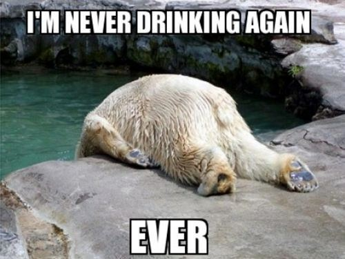 Never Ever Drinking Again