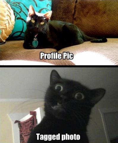 Profile vs Tagged Picture