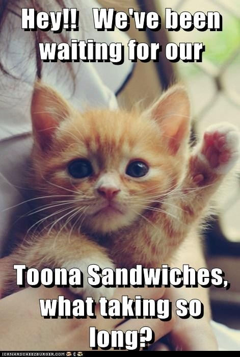 Toona Sandwiches