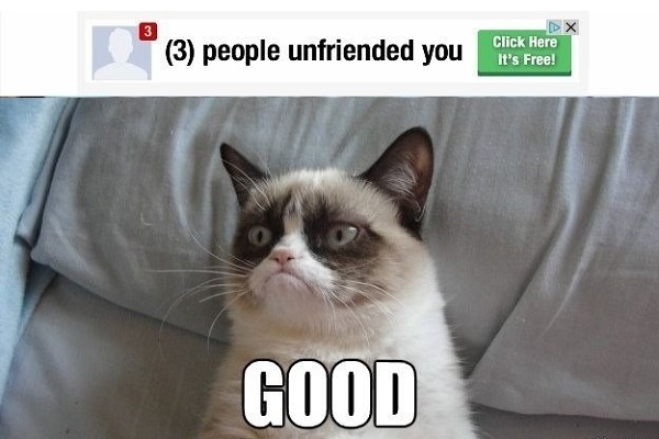 what-are-the-funniest-cat-memes-16288189-dec-5-2012-1-600x400