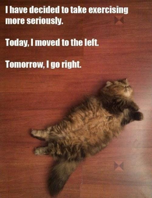 Exercising Plan