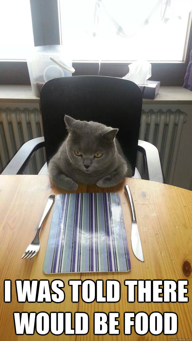 Cat Dinner