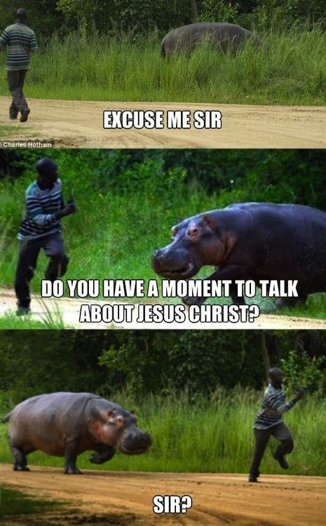 Jehovah Witness Hippo