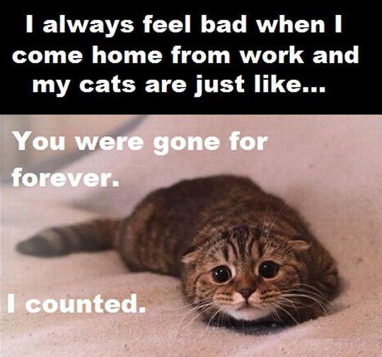 Gone For Forever